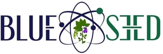 Blue Seed Szojaoltopor Logo